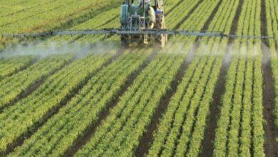 Maroc:UK- nouvelles données climatiques pour l'agriculture