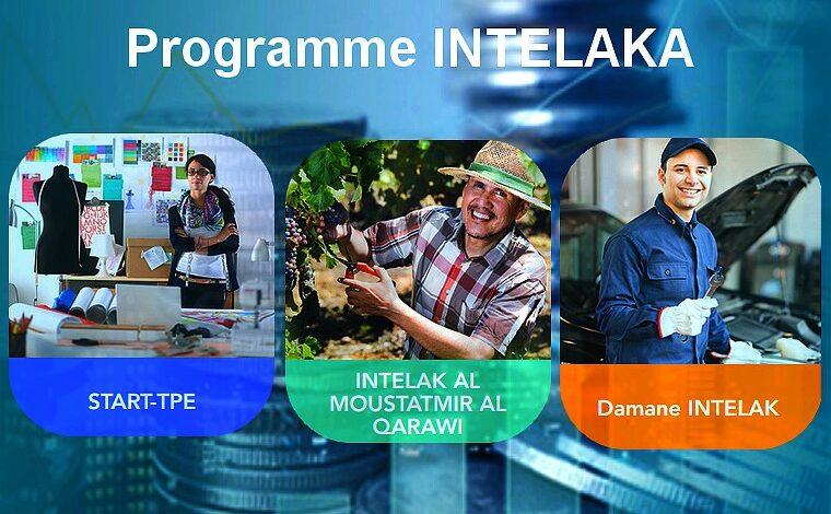 Programme Intelaka: 15.085 crédits garantis en 2020