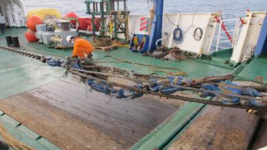 2 Arrivee sur site et preparatifs pour relevage du cable a bord du navire1 e1615391380582