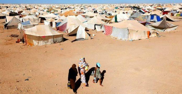 droits de l'Homme à Tindouf