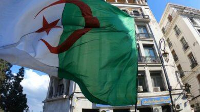 """Des personnalités et Ongs dénoncent """"le recours obsessionnel à la répression"""" en Algérie"""