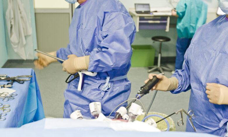 chirurgie clinique des cedres